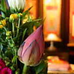 元夫の葬祭やお墓の管理は誰がやるべき?