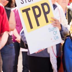 TPPで著作権はどう変わる?(その2)~著作権侵害による非親告罪化、法定損害賠償の導入