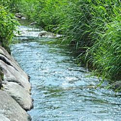 一級河川とは大きい河川のこと?